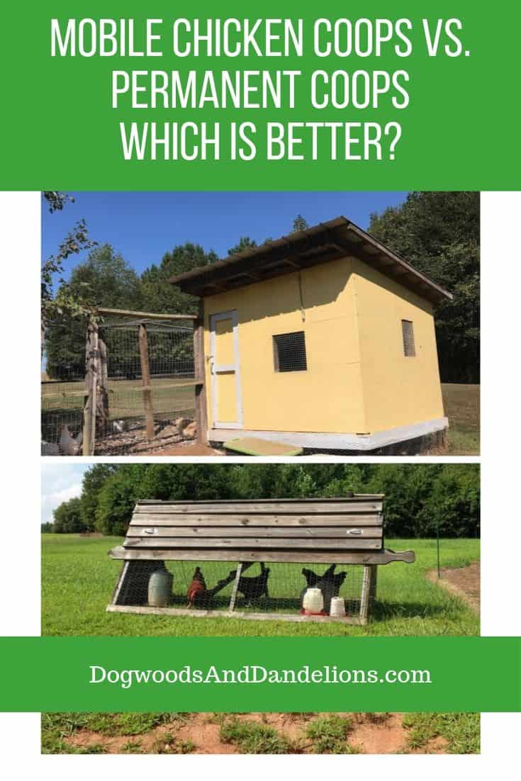 using 2 chicken coops to manage a flock