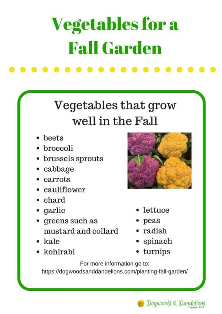Fall Vegetables printable