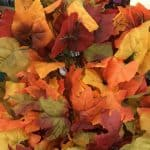 Fall leaves found at the Dollar Tree.