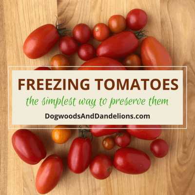 Freezing Tomatoes-The simplest way to preserve tomatoes