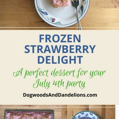 Frozen Strawberry Delight