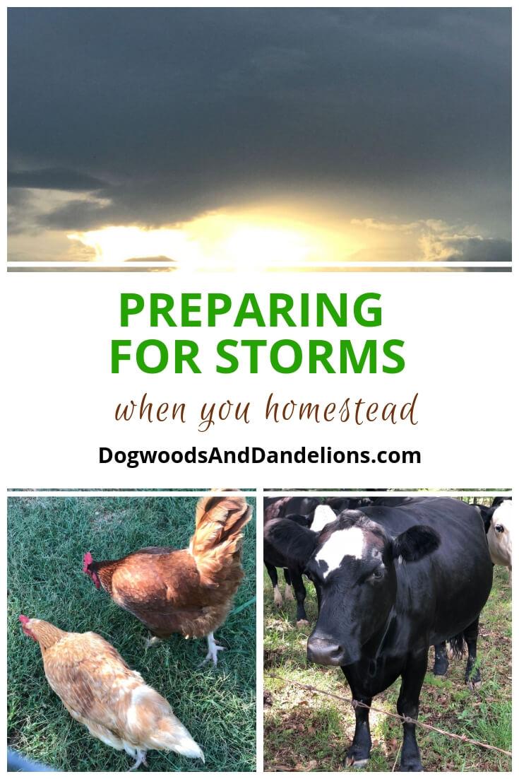 Preparing for Storms | hurricane preparedness | storm preparedness
