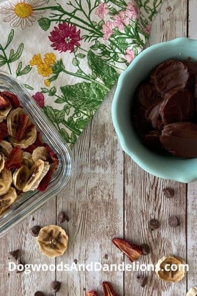 Chocolate Covered dehydrated fruit sitting with dried bananas and strawberries