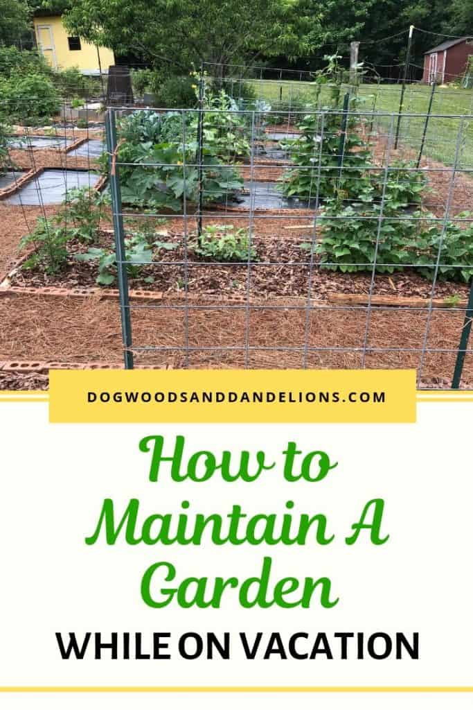 how to maintain a garden while on vacation
