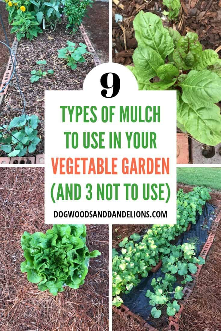 different types of mulch in a vegetable garden