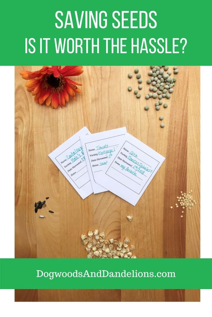 seed storage packets