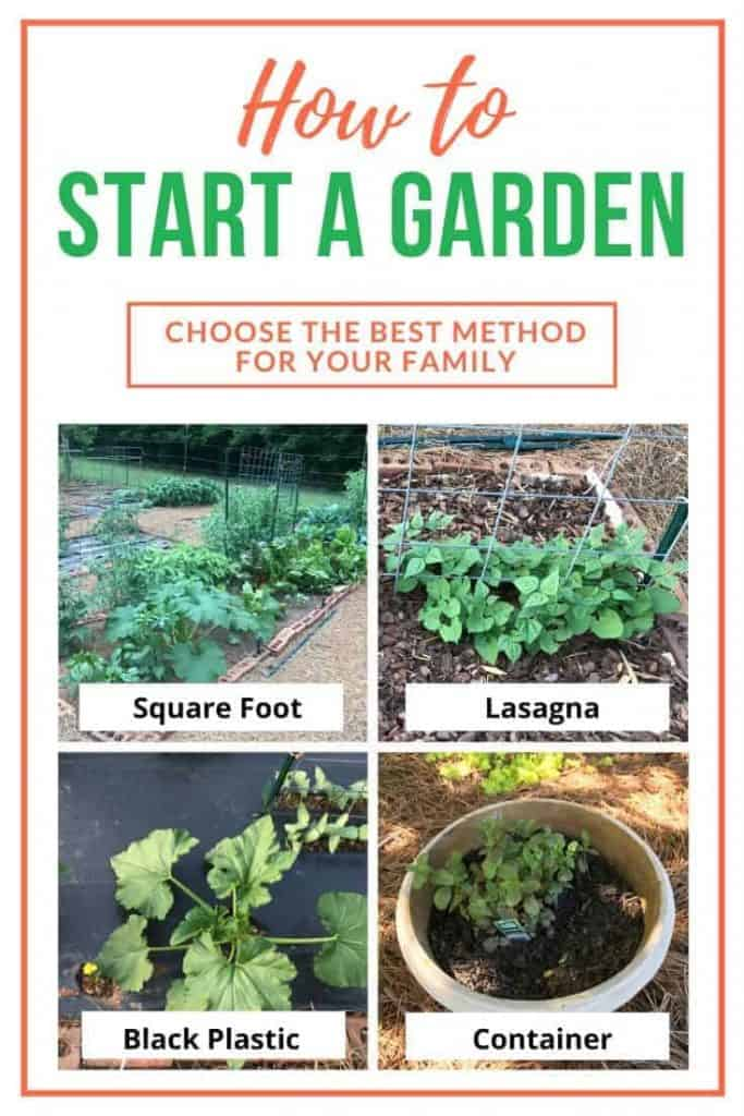 Four gardens grown by the square foot method, the lasagna method, in black plastic, and in a container.