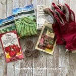 How to Start Vegetables From Seed